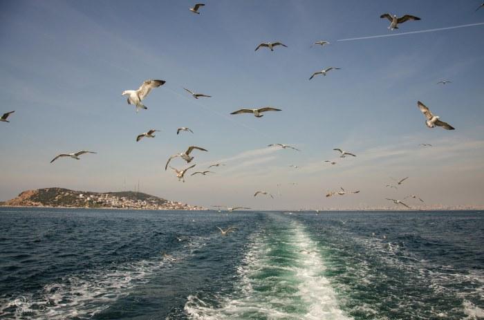 170323-Istanbul-51